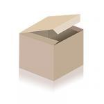 Ein barocker Türknauf aus Eisen mit getriebener Grundplatte